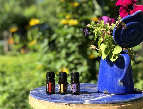 ätherische Öle im Garten, Workshop
